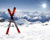 ski-startup