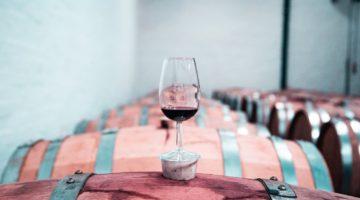Comment agencer une cave à vin dans un magasin